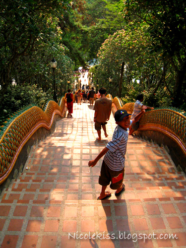 doi suthep staircase