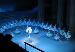 Vienna - Swan Lake Ballet at the Vienna Opera House (Sue L C) Tags: vienna ballet austria swanlake operahouse staatsoper tchaikovsky stateoperahouse viennaoperahouse wienerstaatsoper