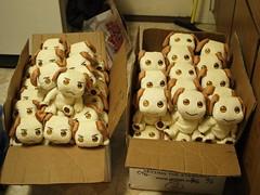 Pups Arrival - 2009.05.12