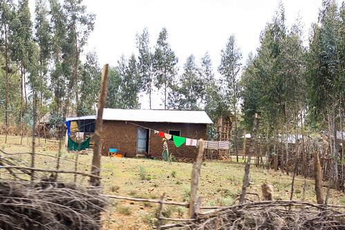 Ethiopia -50