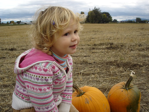 10/7/07 Pumpkin patch