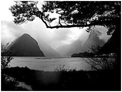 Milford Sound (@WineAlchemy1) Tags: newzealand mitrepeak milfordsound mountains fjord southisland nz rain fjordland westcoast monochrome blackandwhite neroebianco blancoynegro noiretblanc