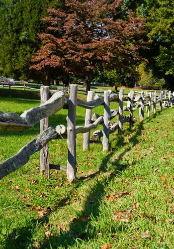 Jamestown Replica Fence
