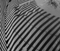 pattern on the sand (gicol) Tags: light shadow bw luz beach lines fence us sand pattern ombra maryland sombra playa minimal spiaggia luce sabbia steccato supershot oceanbeachmd