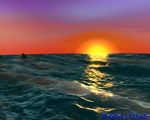 Sunset Ocean and Shark