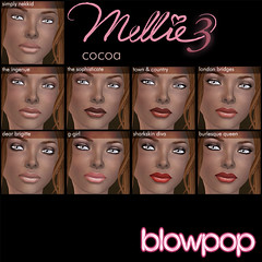 Mellie3 Launch makeups-Cocoa copy copy
