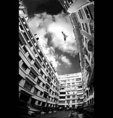 Is it a bird... ? (VeNiVi) Tags: sky blackandwhite building clouds flying noiretblanc fisheye ciel batman marvel nuages architecure immeuble firstquality monochromia infinestyle platinumheartaward thetalepicture iamflickr