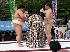 Face Off (vyxle) Tags: baby festival japan sensoji japanese tokyo crazy scary tears babies fat c crying sumo scared asakusa wacky wah ahmunnaeatchoo nakizumo