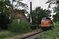 Pfingsten 12.06.2011