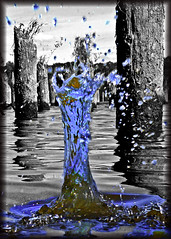 Splash 2 (RickyB-Photography) Tags: seattle flowers blue girls sunset red vacation blackandwhite orange plants brown black flower color sexy green bird art ford water yellow oregon barn contrast sunrise canon river portland hawaii washington orlando nikon colorful purple bright florida disneyland balloon olympus panasonic disneyworld columbiariver chevy waterfalls rainier dodge longview corvette hdr sthelens d3 columbiacity selectivecolor d300 d90 scappoose lx5 cotcbestof2006 pdpnw d300s