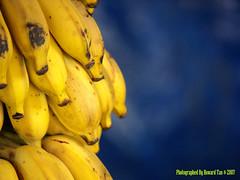 Bananas VI (Garbage Kingdom) Tags: blue colour yellow closeup fruit bananas tropical goldenmix mywinners aplusphoto ysplix colourartaward excapture top20vivid