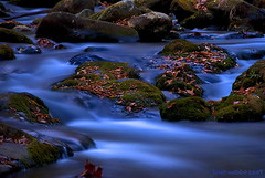 NC Stream at Night (JamesWatkins) Tags: longexposure nightphotography usa art nature water beautiful digital america photography nc lowlight nikon poetry unitedstatesofamerica digitalart creative rivers nightlight streams appalachian southeast poems nikkor digitalphotography waterscape appalachianmountains smokeymountains mountainstreams beautifulwater movingwater beautifulnature darkpictures tacomaartmuseum riverscape streamsandrivers thesmokies smoothwater darkcolors picturesandpoetry lowlightphotography poetryandpictures deepcolors intothedarkness d80 thesmokeymountains jameswatkins nikond80 thesoutheast artandphotography natureatnight poemsandpictures picturesandpoems poetryandphotography darkscapes photographyandpoems ncstreams northcarolinarivers northcarolinastreams creativewords photographyandart photographyandpoetry poemsandpoets wordsandphotography nightstreams streamscape poetsandpoems poemsandphotography smoothedwater streamsinlowlight streamsatnight photographyandword theappalachainmountains mountainstreamsatnight