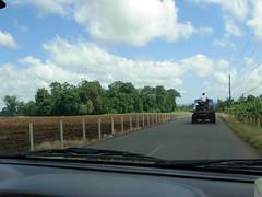 Drive to Zarcero on the 141 (illiot) Tags: drive 141 zarcero