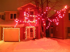 Neighbourhood Christmas lights