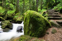 strength (Mace2000) Tags: green nature water rock stairs creek germany landscape deutschland 350d moss domination natur strength landschaft schwarzwald blackforest mace2000 countryscenery 2img2681