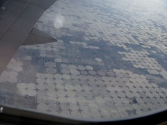 SF Cultivation from Plane 2 (Maddy Gunther) Tags: view arial