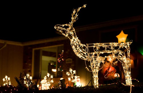 Lighted reindeer Christmas holiday lights in Stayton Oregon