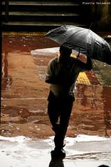 Its raining again (flavita.valsani) Tags: brown black gabriel rain yellow umbrella ed grey chuva sampa raindrops sininho robson isa kk cuca centralmarket guardachuva massao mercadocentral cautionwetfloor mercado impressedbeauty valsani drics infocveis paulojanine chovendonaroseira