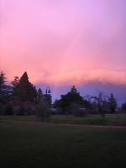 Rainbow in Sebastopol
