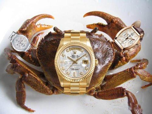 带三个表的河蟹