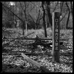 Do not enter (gullevek) Tags: wood blackandwhite 6x6 sign japan writing geotagged tokyo bokeh bronica   ilford   iso125 ilfordfp4125 bronicasqai epsongtx900 zenzabronicasqai zenzanonps80mmf28 geo:lat=35688106 geo:lon=139689896