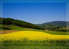 simple landscape 2
