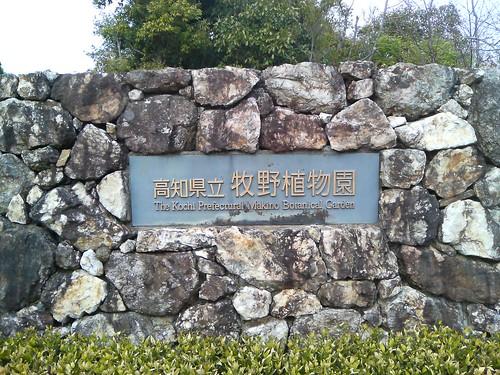 牧野植物園 1