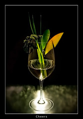 Glass (nune) Tags: light glass grass fruit wow wine 2008 aplusphoto diamondclassphotographer weingutpauritsch