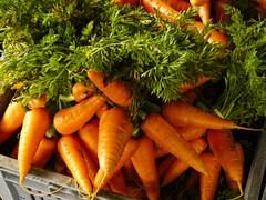 lovely carrots