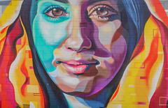 Hidden Street Art (Anthony's Olympus Adventures) Tags: adelaide southaustralia sa australia streetart art artwork painting graffiti paint colour colourful color vibrant wall wallart olympusem10 olympus olympusomd photo photography face portrait