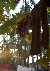 porch view at sunset (sean o mac) Tags: sun india holiday nature yoga goa warmth jo sean hindu mandrem