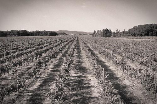 l'histoire du domaine des agates