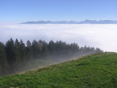 View over the clouds in the valley II (AN/sascha) Tags: blue autumn sky panorama oktober white mountains verde green film blanco grass clouds forest canon october herbst oberbayern meadow wiese himmel wolken 2006 an berge bosque cielo nubes otoo gras octubre prado wald weiss blauerhimmel gruen montaas cesped abovetheclouds zwiesel voralpen ueberdenwolken abovethevalley bayerischevoralpen ansascha overthevalley anobservingdocumenting