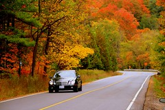 Wish you a Wonderful Weekend  ! (Ming chai) Tags: autumn mercedes benz mywinners happinessconservancy