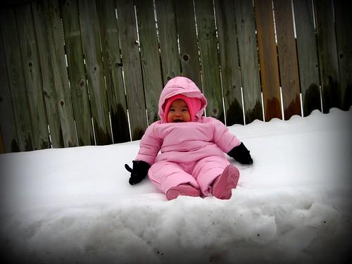 Stellar sitting on snow