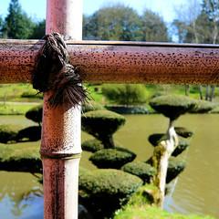 Parc de Maulévrier - Barrière bambou