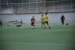 IMG_1656 (tindemus) Tags: ilves p08 värit jalkapallo hipposhalli