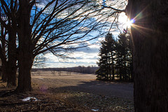 Shadows in the Field (marylea) Tags: explored feb9 2017 landscape rural field trees bluesky winter sunbeam sunlight rays sunrays explore