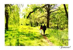 DSC09315 (mmparthi) Tags: red music toronto canada love happy valentine romance always forever srilanka manoharan parthiban