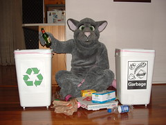 Rattus Recycling