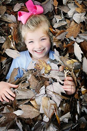IMAGE: http://farm3.static.flickr.com/2403/2101740380_235ec23092.jpg