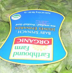 jesus-spinach