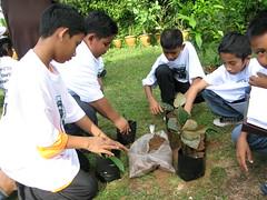 Herbwalk In Langkawi
