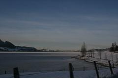 Christmas 08 (Photfolio) Tags: switzerland frozenlake