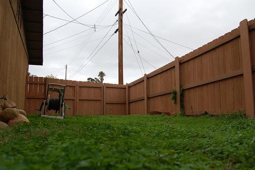 Grey Sundaytime Backyard