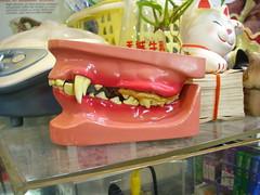 狗牙齒模型