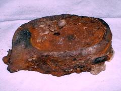lata oxidada (jacilluch) Tags: can oxido basura conchas lata bestpictures crustaceos trashbit basuraenelmar latasardinas