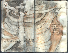 Don't hold your breath. May7/8, 2008 (Sharon Frost) Tags: drawings anatomy ribs bones ribcage skeletons watercolors sketchbooks journals moleskines sternum clavicle artjournals sklog daybooks sklogs anatomyinart