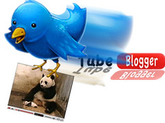 Auto Tweet Youtube Videos