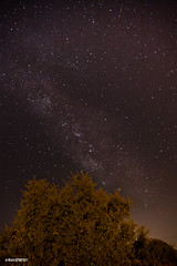 Milky Way (Aviram Ostrovsky) Tags: stars nightsky milkyway bencanales
